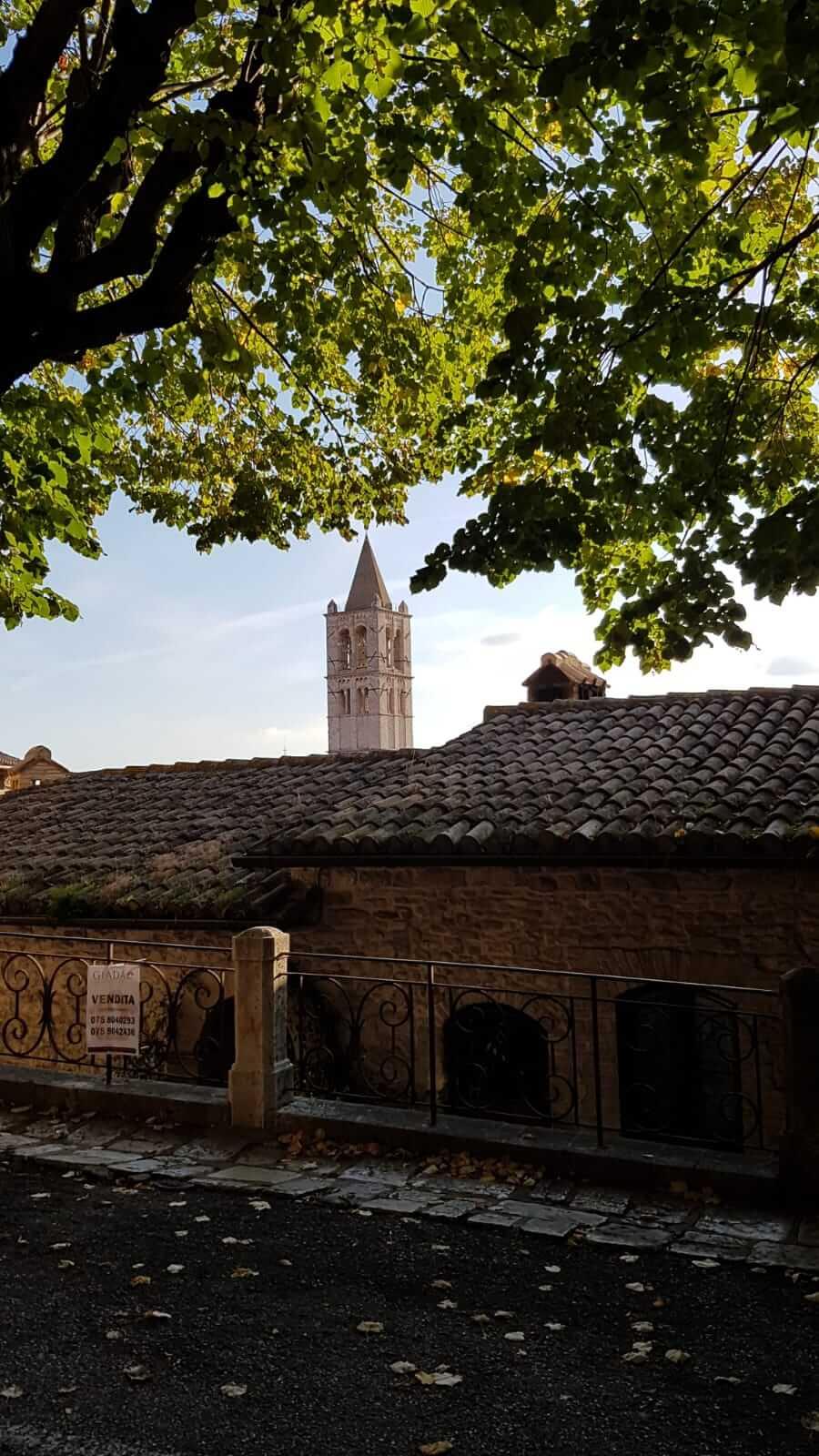 Assisi : strada di Assisi, sullo sfondo il campanile